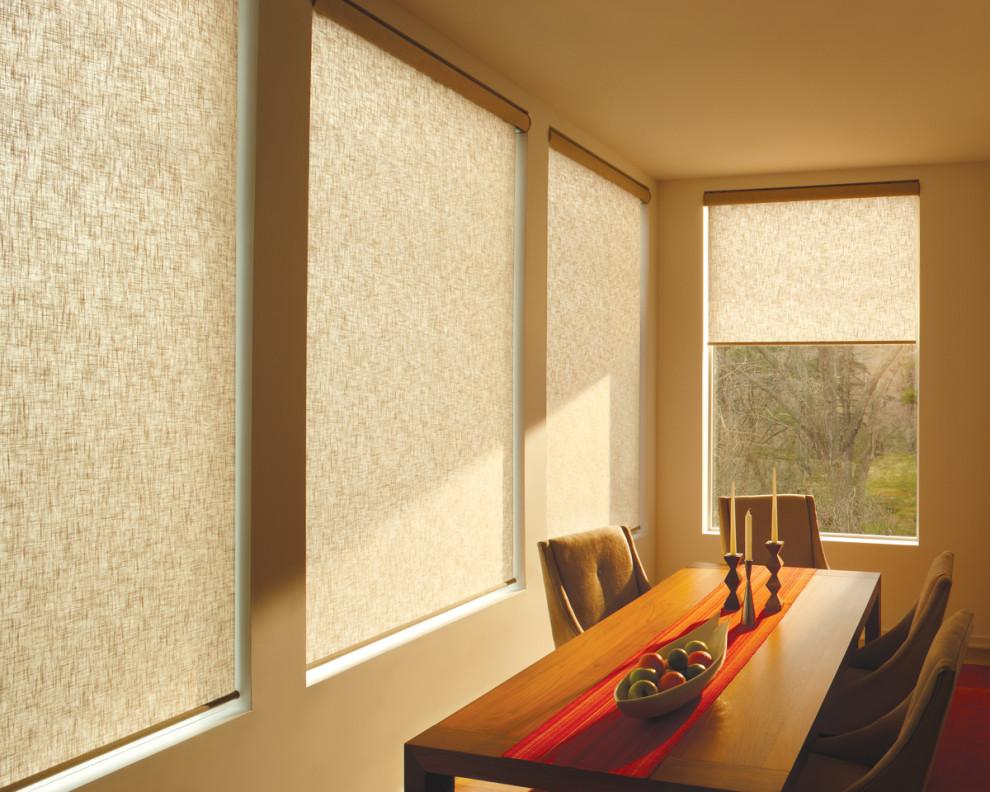 Примеры рулонные шторы